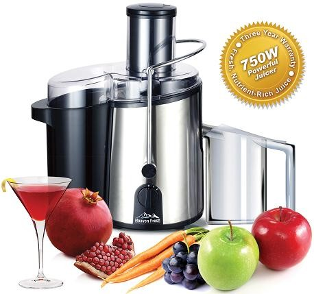 Heaven Fresh NaturoPureTM Powerful Stainless Steel Deluxe Juicer