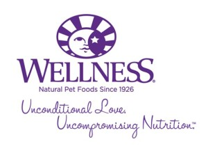 Wellnes Logo